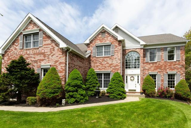 6 Jacob Jones Way, Westborough, MA 01581 (MLS #72506869) :: Kinlin Grover Real Estate