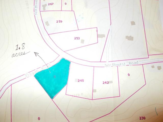 0 Pisgah Road, Westhampton, MA 01027 (MLS #72523768) :: Exit Realty