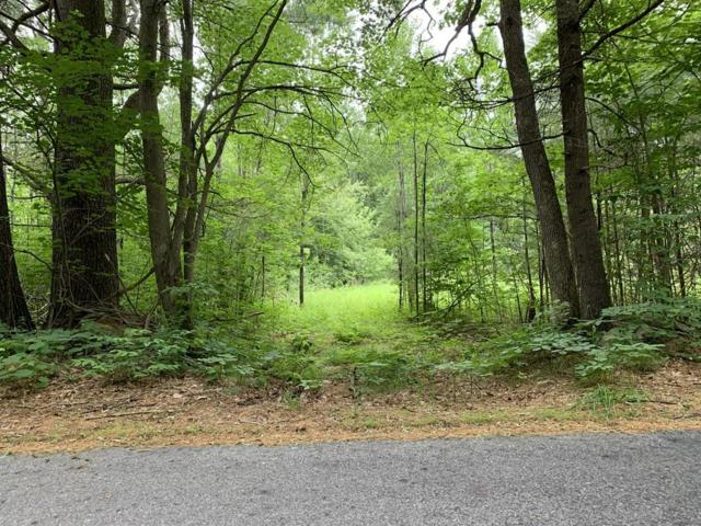 0 New Braintree Road, Oakham, MA 01068 (MLS #72523950) :: AdoEma Realty