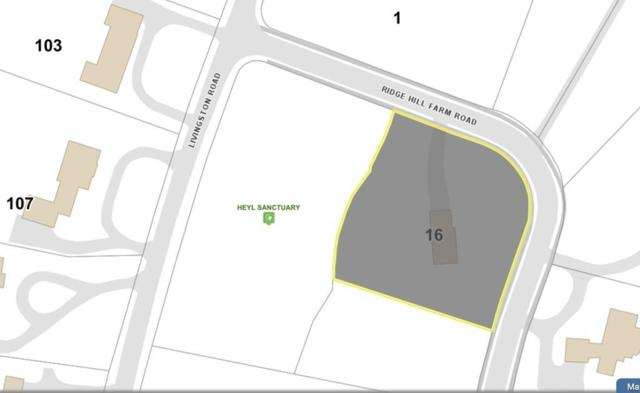 16 Ridge Hill Farm Rd, Wellesley, MA 02482 (MLS #72524602) :: Revolution Realty