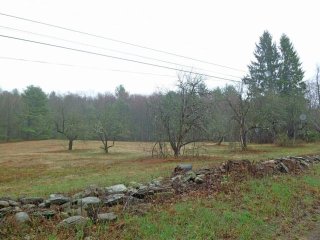 0 Cave Hill Rd, Leverett, MA 01054 (MLS #72525027) :: Apple Country Team of Keller Williams Realty