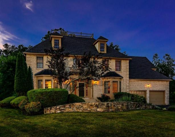 27 Wachusett View Drive, Westborough, MA 01581 (MLS #72528031) :: DNA Realty Group