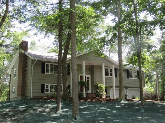 2 Lois Drive, Walpole, MA 02081 (MLS #72531250) :: Primary National Residential Brokerage