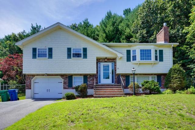 46 Washington Ave, Burlington, MA 01803 (MLS #72531427) :: Westcott Properties