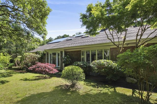 58 Exeter, Yarmouth, MA 02673 (MLS #72531934) :: Team Tringali