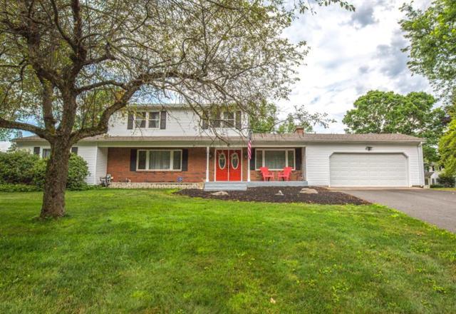 8 Virginia, South Hadley, MA 01075 (MLS #72534638) :: Westcott Properties