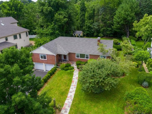 66 Broken Tree Rd, Newton, MA 02459 (MLS #72535928) :: Apple Country Team of Keller Williams Realty
