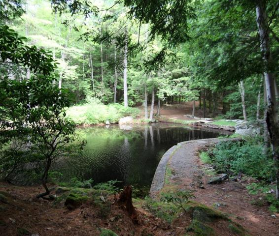 0 Jennison Road, Wendell, MA 01379 (MLS #72536012) :: Spectrum Real Estate Consultants