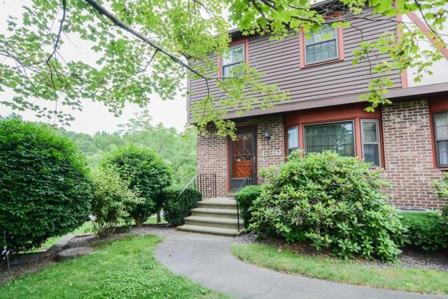 E30 Scotty Hollow E30, Chelmsford, MA 01863 (MLS #72536999) :: DNA Realty Group