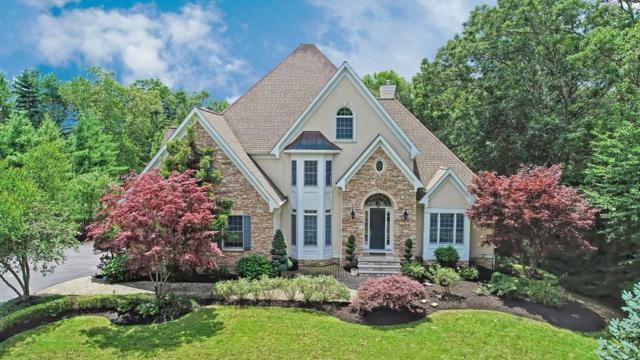 62 Mikayla Ann Dr, Rehoboth, MA 02769 (MLS #72543734) :: Westcott Properties
