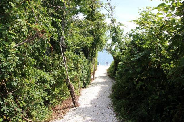 90 Shore Dr W 15D, Mashpee, MA 02649 (MLS #72545849) :: Exit Realty