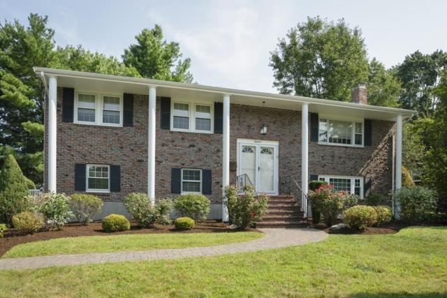18 Pinewood Rd, Canton, MA 02021 (MLS #72546384) :: The Muncey Group