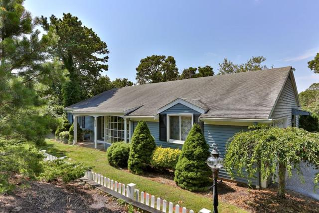 323 Riverview Drive, Chatham, MA 02633 (MLS #72547195) :: The Muncey Group