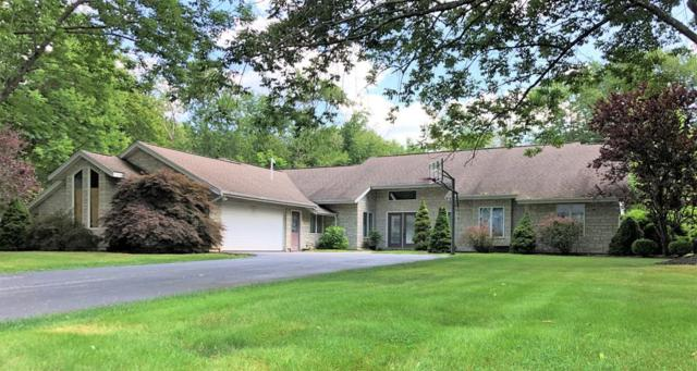29 Pine Tree Ln, Raynham, MA 02767 (MLS #72549905) :: Primary National Residential Brokerage