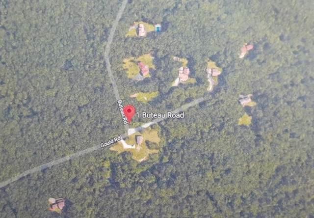 lot 2 Buteau Road, Charlton, MA 01507 (MLS #72565688) :: Driggin Realty Group