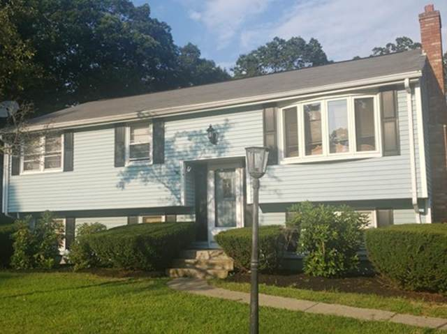 31 Fortin Dr, Brockton, MA 02302 (MLS #72566085) :: DNA Realty Group
