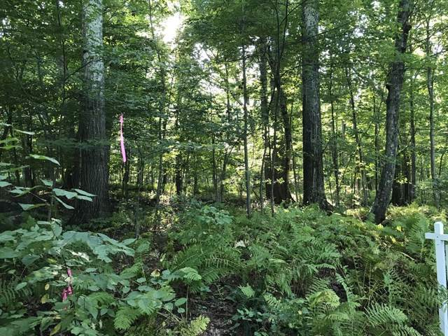 LOT 0 Chapin Rd, Hampden, MA 01057 (MLS #72566345) :: NRG Real Estate Services, Inc.