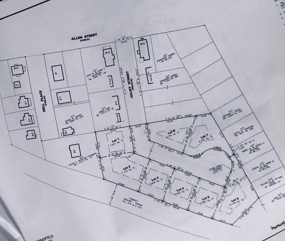 Lot 1 Juliet St, Springfield, MA 01118 (MLS #72568681) :: Vanguard Realty