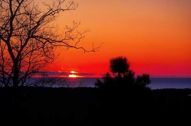 21 Dawn's Light, Plymouth, MA 02360 (MLS #72578865) :: Conway Cityside