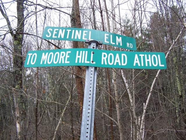 Lot 18B Sentinel Elm Rd., Orange, MA 01364 (MLS #72590441) :: Team Tringali