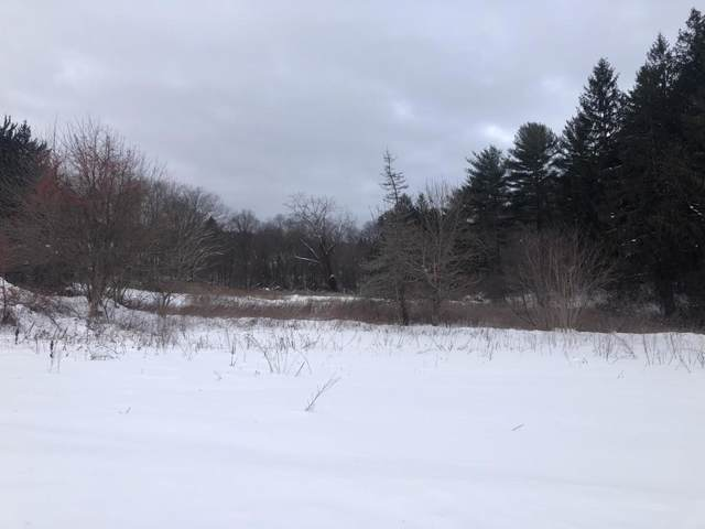 Lot 152 W River St, Orange, MA 01364 (MLS #72598691) :: Conway Cityside