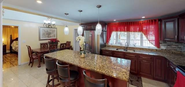 7 College Ln, Methuen, MA 01844 (MLS #72600090) :: Kinlin Grover Real Estate
