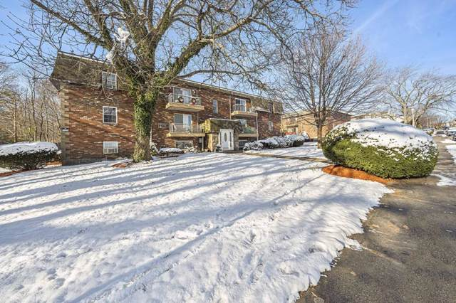 10 Skyline Dr #3, Braintree, MA 02184 (MLS #72600577) :: DNA Realty Group