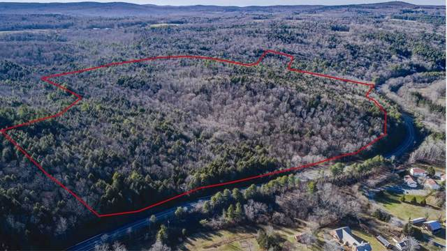 0 Berkshire Trail (Rt 9), Cummington, MA 01026 (MLS #72600630) :: EXIT Cape Realty