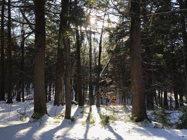 0 Mount Meadow Rd S, Becket, MA 01223 (MLS #72602315) :: The Muncey Group