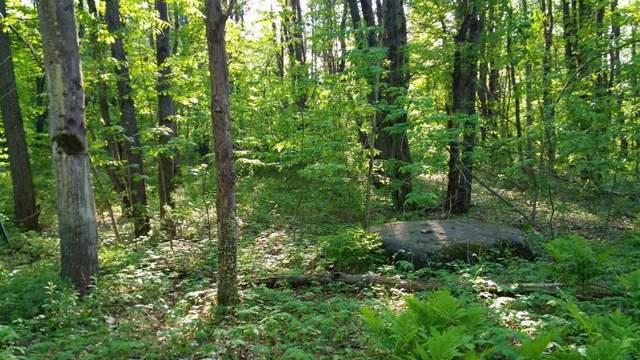 Lot 1 Elm St, Buckland, MA 01338 (MLS #72607856) :: The Muncey Group