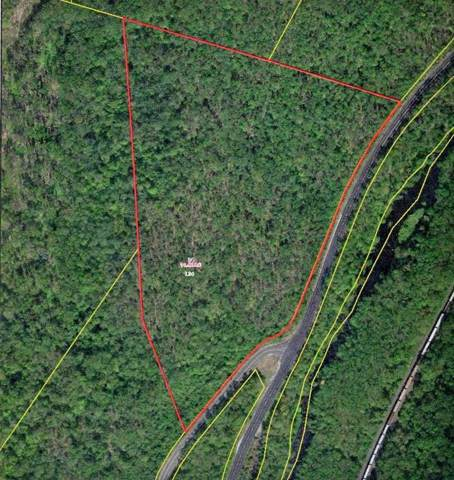Lot 34 Old Warren Road, Palmer, MA 01069 (MLS #72609407) :: Spectrum Real Estate Consultants
