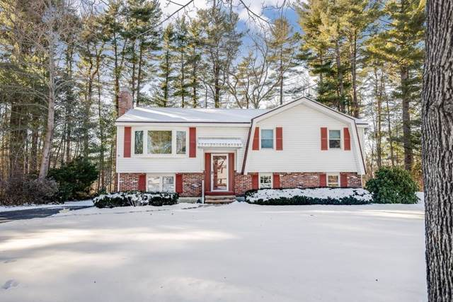 31 Nathan Rd, Wilmington, MA 01887 (MLS #72611221) :: Exit Realty