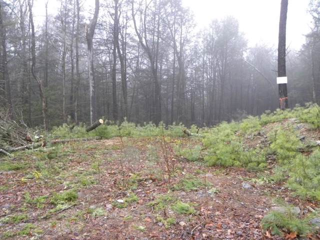 Lot 10 Eleanor Lane, Charlton, MA 01507 (MLS #72611311) :: Trust Realty One