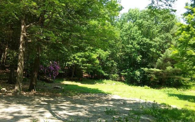 164 Chipman, Middlefield, MA 01243 (MLS #72611926) :: The Muncey Group