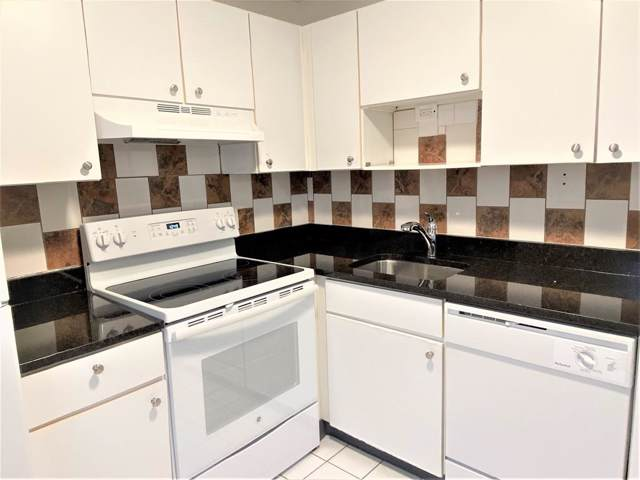 32 Annese Rd #1, Chelsea, MA 02150 (MLS #72612480) :: Driggin Realty Group