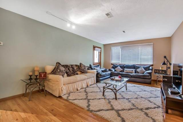 925 E 2Nd St #1, Boston, MA 02127 (MLS #72619354) :: DNA Realty Group