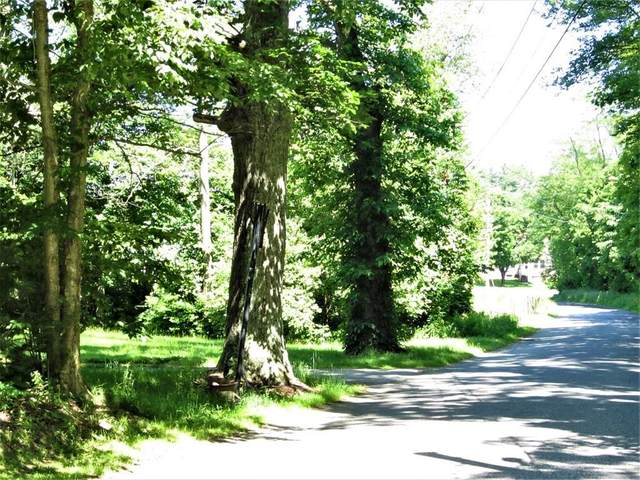Lot 48 Coffey Hill - Map 19 - Lot 48, Ware, MA 01082 (MLS #72619972) :: NRG Real Estate Services, Inc.