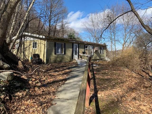 1 Feltonville, Hudson, MA 01749 (MLS #72622498) :: Driggin Realty Group