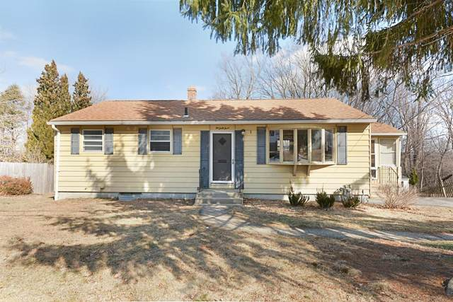 263 Saint Nicholas Ave, Worcester, MA 01606 (MLS #72625851) :: DNA Realty Group