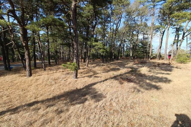 41 North Westgate, Harwich, MA 02645 (MLS #72629790) :: Charlesgate Realty Group