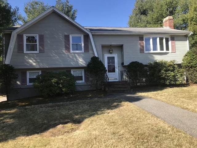 6 Mulberry Lane, Dedham, MA 02026 (MLS #72635774) :: The Gillach Group