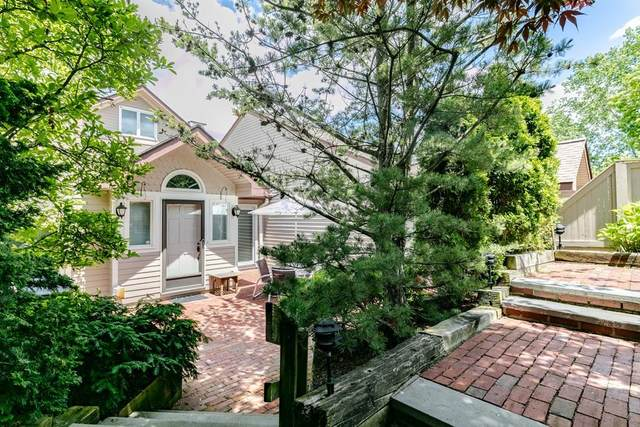 81 Algonquin Rd #81, Newton, MA 02467 (MLS #72639996) :: Trust Realty One