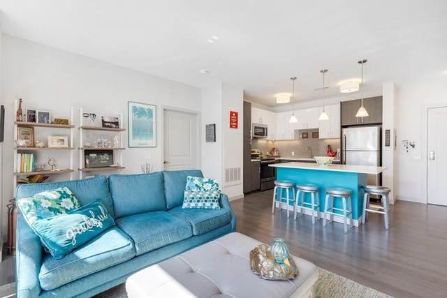99 Tremont Street #410, Boston, MA 02135 (MLS #72641895) :: Conway Cityside