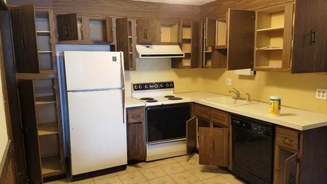 15 Spencer Road 20E, Boxborough, MA 01719 (MLS #72642841) :: Spectrum Real Estate Consultants