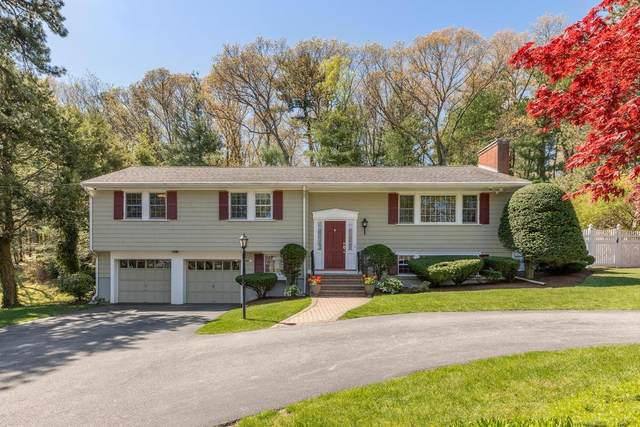 28 Johnson Rd, Winchester, MA 01890 (MLS #72656193) :: The Duffy Home Selling Team