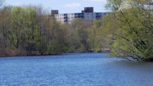 151 Coolidge Ave #409, Watertown, MA 02472 (MLS #72658278) :: Conway Cityside