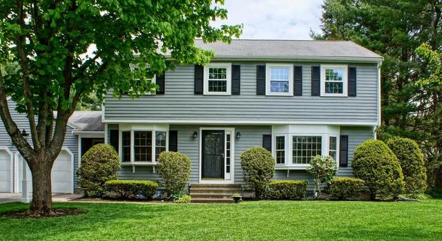 12 Abbot Bridge Dr, Andover, MA 01810 (MLS #72658869) :: Trust Realty One