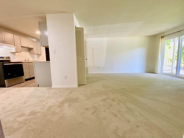 80 Damon Rd #8203, Northampton, MA 01060 (MLS #72659261) :: Kinlin Grover Real Estate