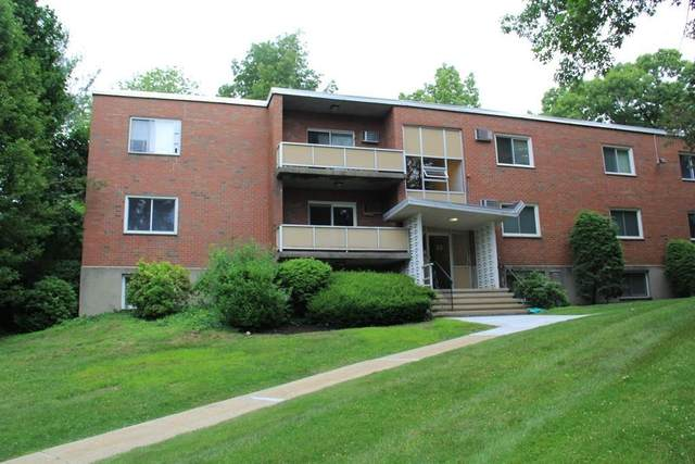 33 Jacqueline Rd C, Waltham, MA 02452 (MLS #72662133) :: DNA Realty Group