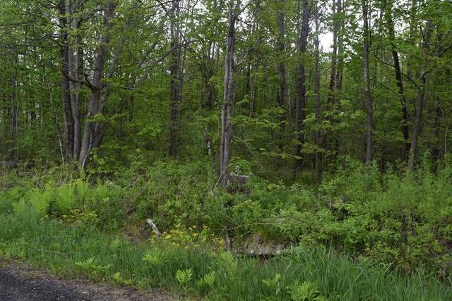Lot 2-C Crest, Granville, MA 01034 (MLS #72663677) :: Anytime Realty